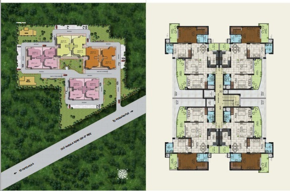 site and cluster plan